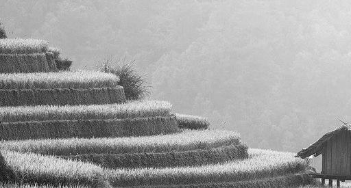 Terrasse en béton à Chatou 78400 : Prix et devis