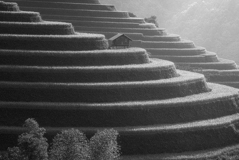 Terrasse en béton à Escaudain 59124 : Prix et devis